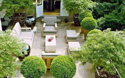 برای داشتن یک باغ بام ( روف گاردن ) به چه چیزهایی باید توجه کرد؟