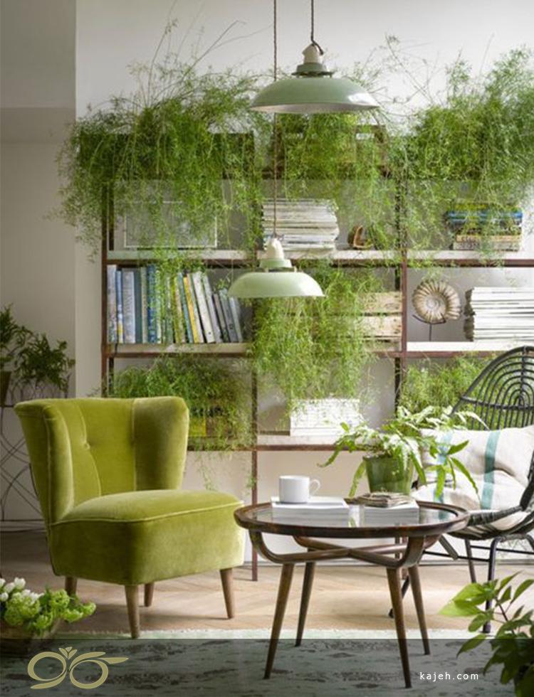 استفاده از گیاهان در دکوراسیون داخلی