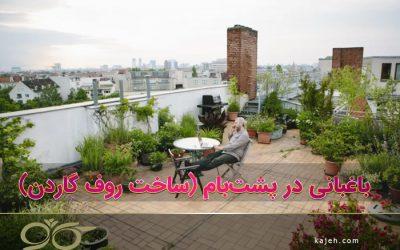 باغبانی در پشت بام