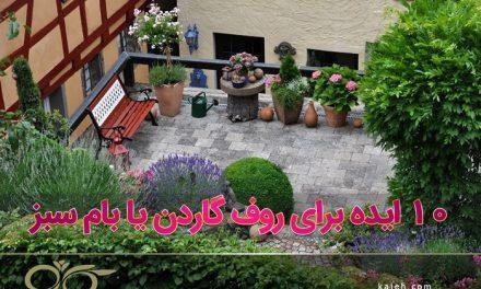 گیاهان مناسب روف گاردن: آموزشی کامل برای گیاه کاری روف گاردن