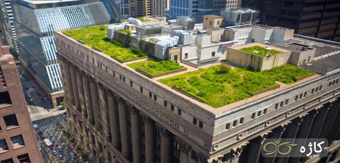 روف گاردن ساختمان شهرداری (شیکاگو)
